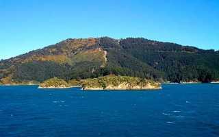 Веллингтон, Новая Зеландия. Где находится, чем знаменит, достопримечательности, фото