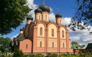 Нужна ли виза в Эстонию для россиян в 2020?