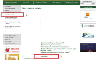 Виза, провиза на Кипр для россиян. Оформление самостоятельно, документы, стоимость