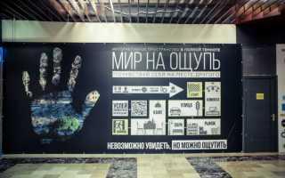Интересные места в Санкт-Петербурге для туристов. Развлечения для семьи, молодежи