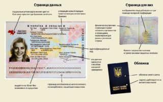 Как сделать загранпаспорт в Украине биометрический нового образца 2021, документы, как получить, проверка статуса