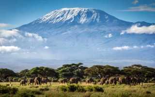 Гора Килиманджаро — самая высокая точка Африки. Вулкан на карте, координаты, фото