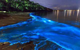 Остров Ваадху, Мальдивы. Фото, отели на карте, пляжи, как добраться, интересные факты, туры, цены